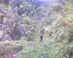 Jejak di Kaki Bukit